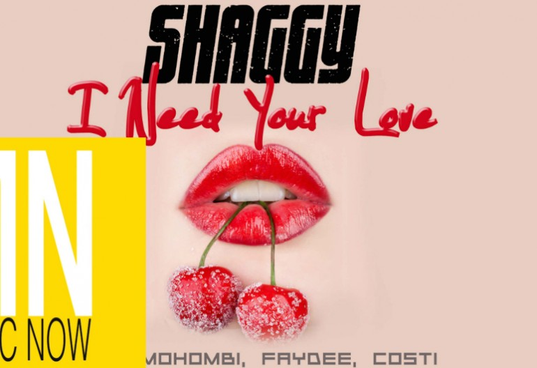 "Shaggy ""I Need Your Love"" New Music Now Logo"